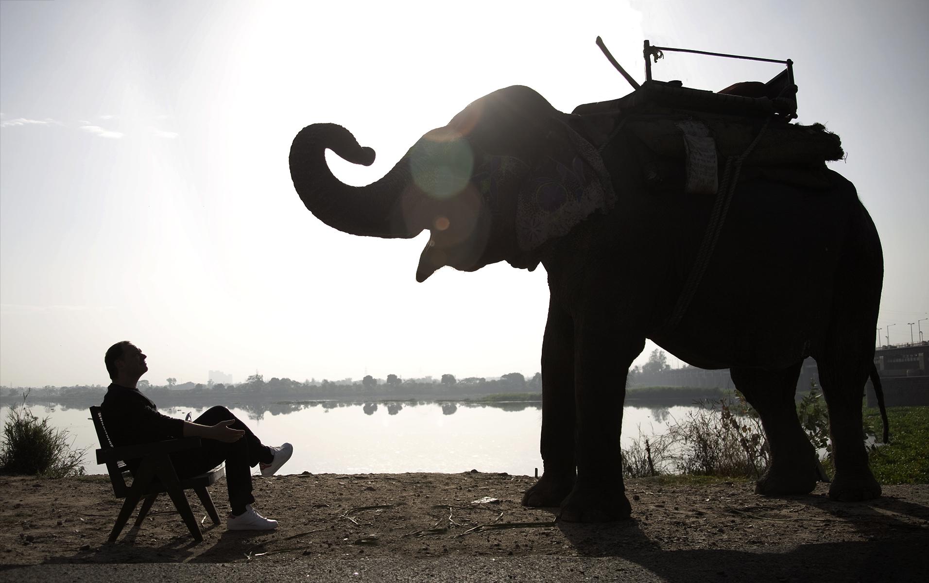 Chandigarh, India. 2011